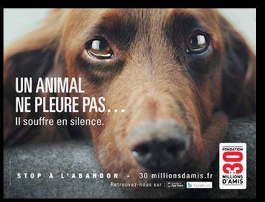 Campagne 2012 contre l'abandon - 30 millions d'amis dans k) PROTECTION ANIMALE affiche1