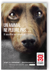 affiche2 dans k) PROTECTION ANIMALE