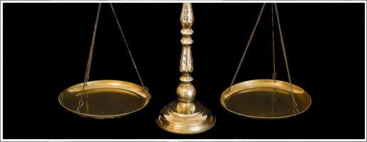CHAT BRULE A L'ACIDE-DECEPTION LORS DU PROCES chat-justice-actu_01