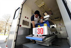 Chiens errants : les cliniques mobiles en route vers Kiev