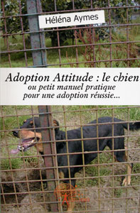 adoption-attitude.jpg
