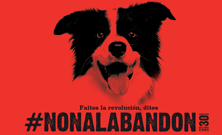 Faites la revoluçion, dites #NONALABANDON